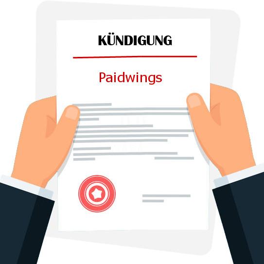 Kontakt paidwings ag Podmínky užití
