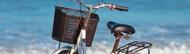 fahrradkorb test vergleich