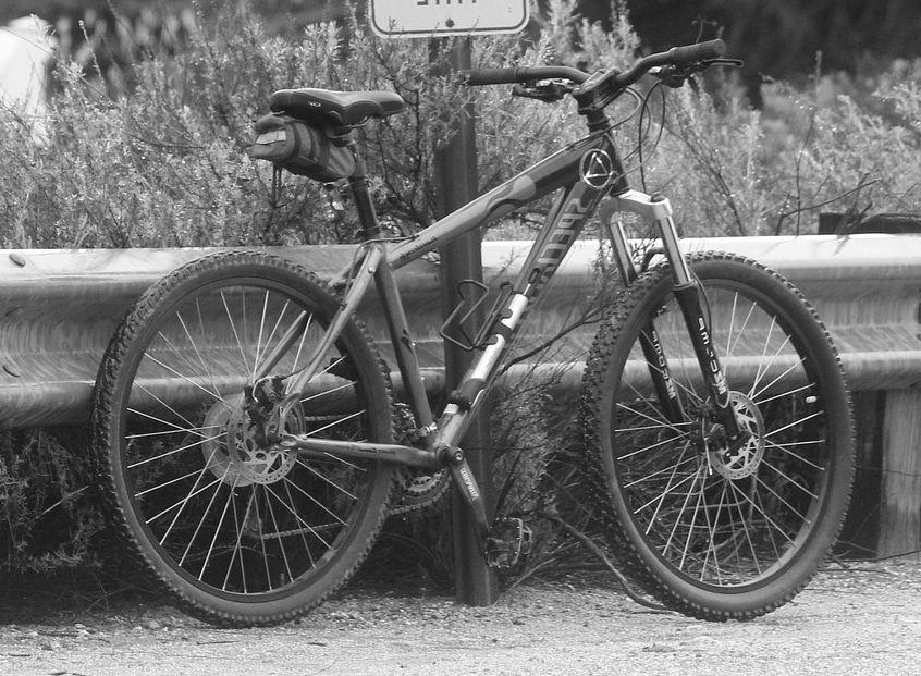 Fahrradanhänger Mountainbike