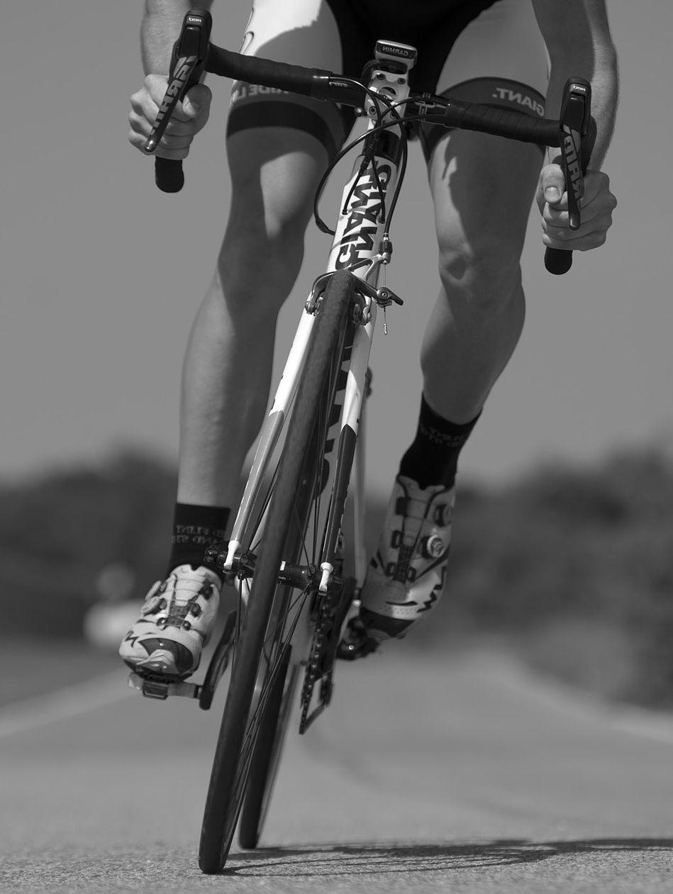 Fahrradträger Sportrad