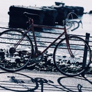 fitnessbike carbon