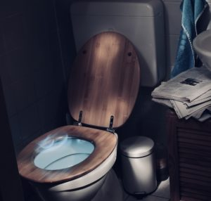 toilettendeckel holz