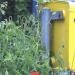 Deutsche Post verbietet beliebte Versandmethode für Glückwünsche
